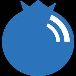 blubrry wordpress podcast plugin